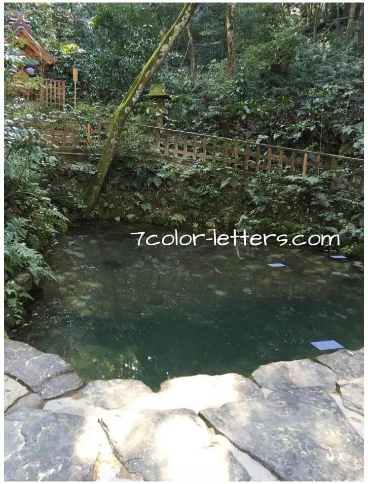 八重垣神社 占い 鏡の池